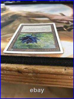 Black lotus mtg Unlimited P9