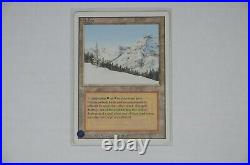 Magic the Gathering Taiga (Dual Land) Card in Excellent Condition